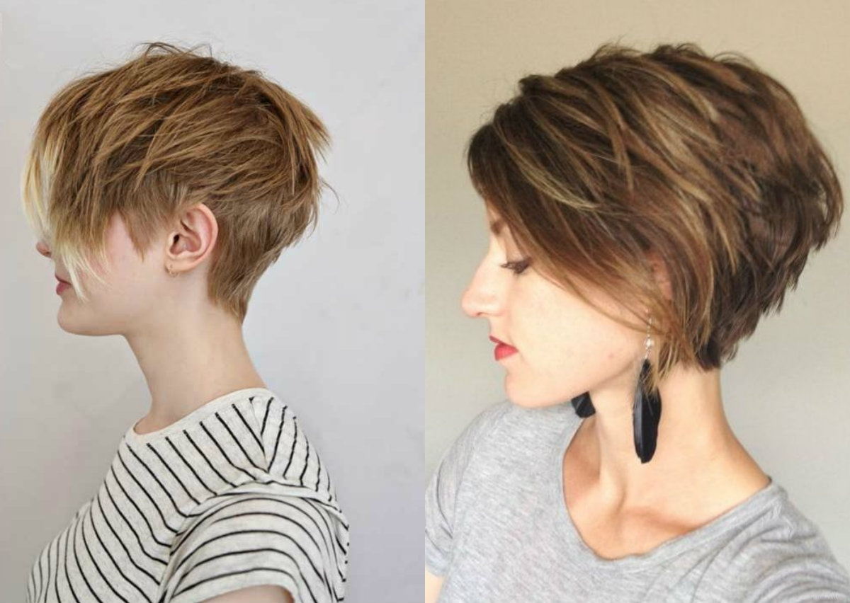 Displaying Photos Of Layered Pixie Hairstyles View 9 Of 15 Photos
