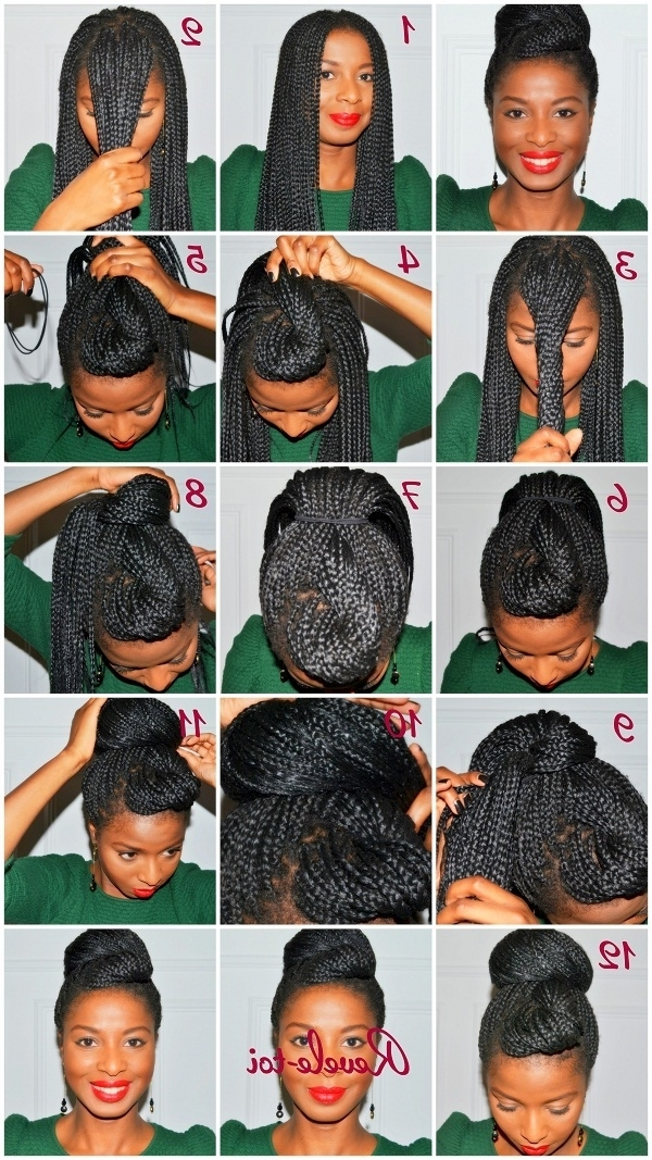 Photos Of Box Braids Updo Hairstyles Showing 6 Of 15 Photos