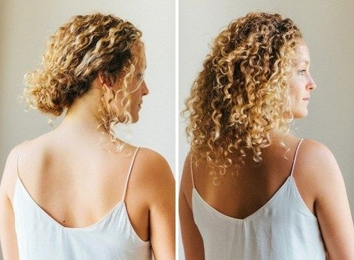 40 Creative Updos For Curly Hair | Curly, Updo And Up Dos For Most Current Quick Updos For Long Hair Casual (View 5 of 15)