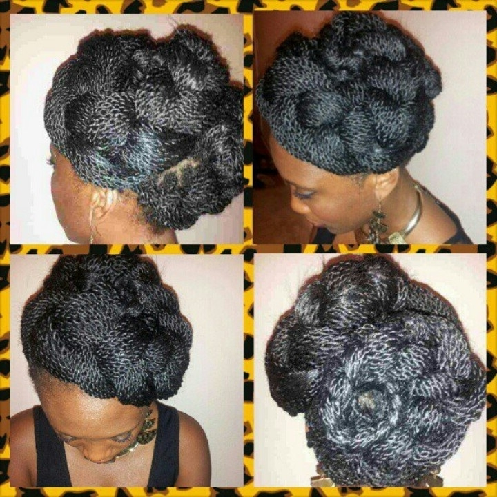 75 Best Senegalese Twist !! Images On Pinterest   African Braids Within Most Popular Senegalese Twist Styles Updo Hairstyles (View 6 of 15)