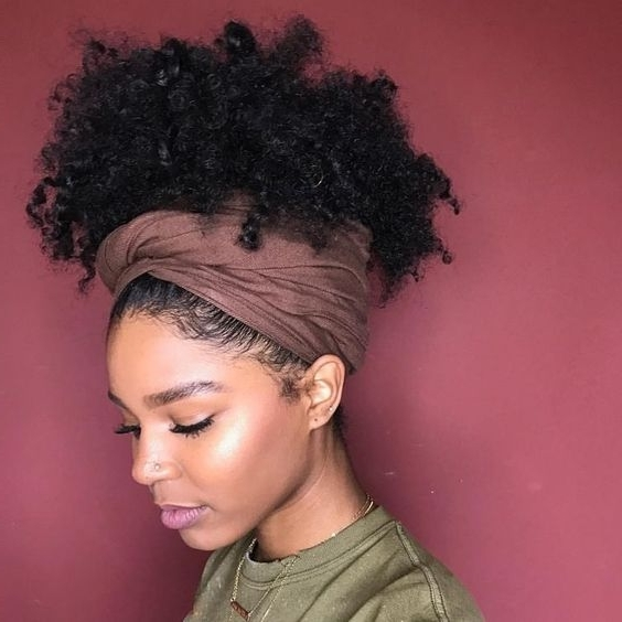 African American Natural Hairstyles For Medium Length Hair Regarding Most Current Updo Hairstyles For Medium Length Natural Hair (View 6 of 15)