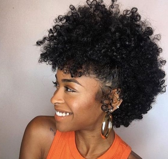 African American Natural Hairstyles For Medium Length Hair Within Best And Newest Updo Hairstyles For Medium Length Natural Hair (View 14 of 15)