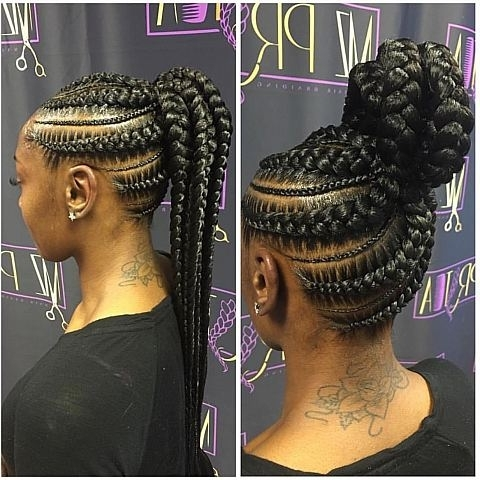 Cornrow Braided Updo Hairstyles With High Bun Best Women Stock Regarding Most Recent Cornrow Updo Bun Hairstyles (View 9 of 15)