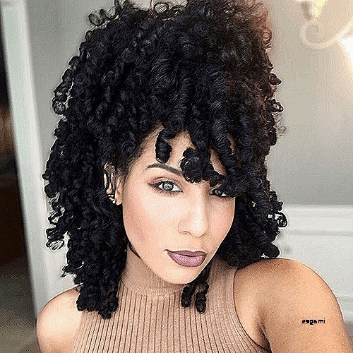 Luxury Natural Afro American Hairstyles : Northaltaventures For Recent Cute Updos For African American Hair (View 13 of 15)
