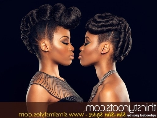 Natural Hair Updo Hairstyles With Regard To Updo Hairstyles African With Newest Updos For African American Natural Hair (View 12 of 15)