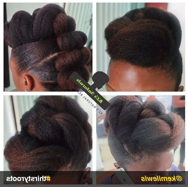 Natural Hair Updo Hairstyles You Can Create Regarding Latest Black Natural Hair Updo Hairstyles (View 13 of 15)