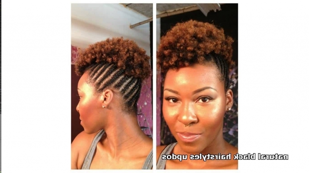 Natural Updo Hairstyle Natural Black Updo Hairstyles Black Hair In Most Up To Date Updo Hairstyles For Natural Black Hair (View 6 of 15)
