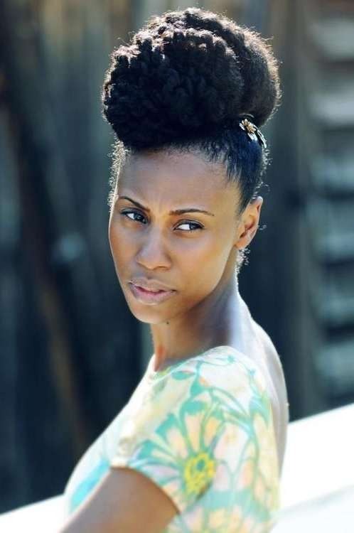 Protective Hairstyles For Black Women – Natural Hair Updos | The Within Newest Updo Hairstyles For Black Women With Natural Hair (View 2 of 15)