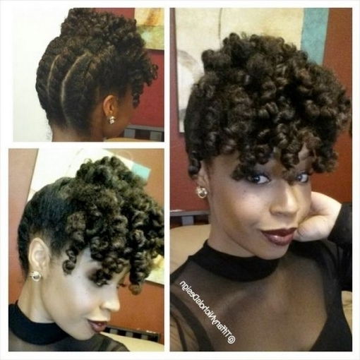 Protective Styles For 4C Hair | Hergivenhair Inside Twist Updo Inside Most Recent Natural Twist Updo Hairstyles (View 11 of 15)