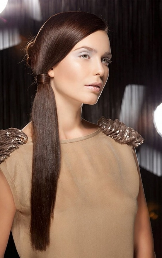 Side Ponytail Updo Hairstyles For Long Straight Hair With Fine In With Most Recent Updo Hairstyles For Long Fine Straight Hair (View 5 of 15)