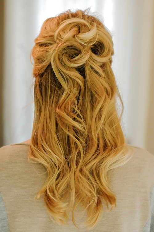 Top 30 Half Up Half Down Hairstyles For Most Current Updo Half Up Half Down Hairstyles (View 15 of 15)