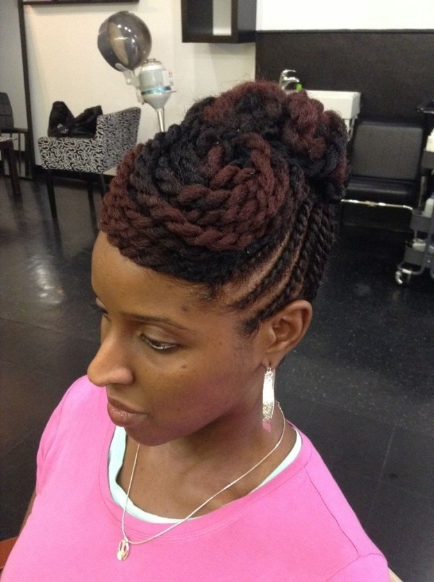 Twist Hairstyles For Natural Hair | Twist Braided Styles Inside Regarding 2018 Braids And Twist Updo Hairstyles (View 7 of 15)