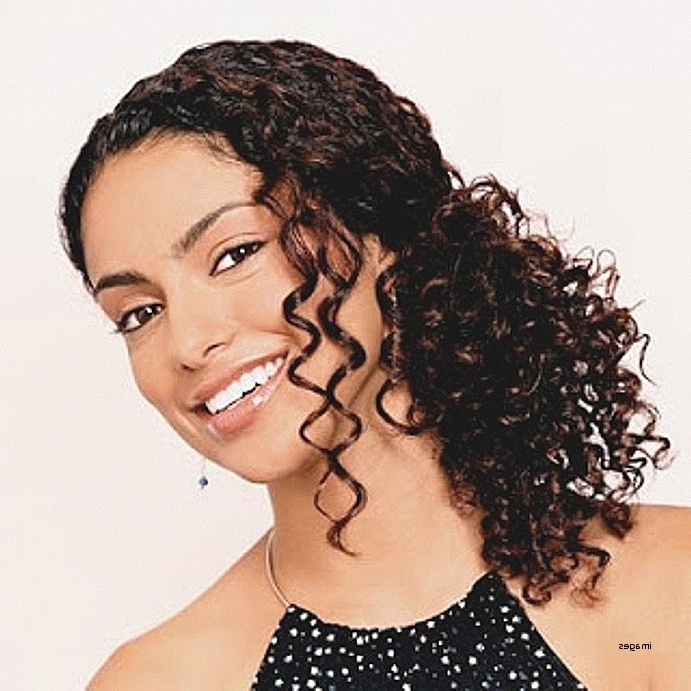 Updo Hairstyles For Natural Black Hair Inspirational Black Curly With Current Curly Updo Hairstyles For Black Hair (View 14 of 15)