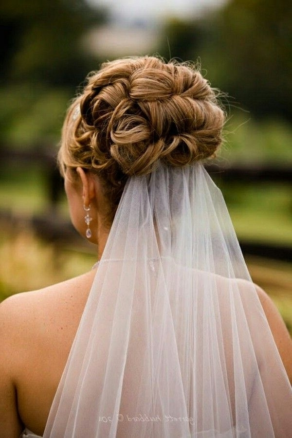 Wedding Updo With Veil Underneath | Wedding Hair | Pinterest Intended For Recent Wedding Updo Hairstyles With Veil (View 2 of 15)