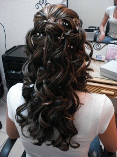 16 Bridal Hairstyles For Long Hair | Loose Curls, Wedding And Hair Style In Wedding Hairstyles For Dark Hair (View 11 of 15)