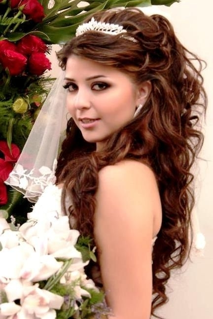 Featured Photo of Wedding Hairstyles For Long Hair Down With Tiara