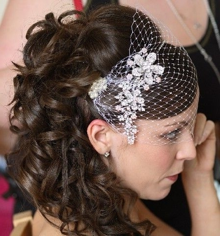 37 Best Wedding Images On Pinterest | Wedding Hair Styles, Weddings With Wedding Hairstyles For Long Hair With Birdcage Veil (View 4 of 15)