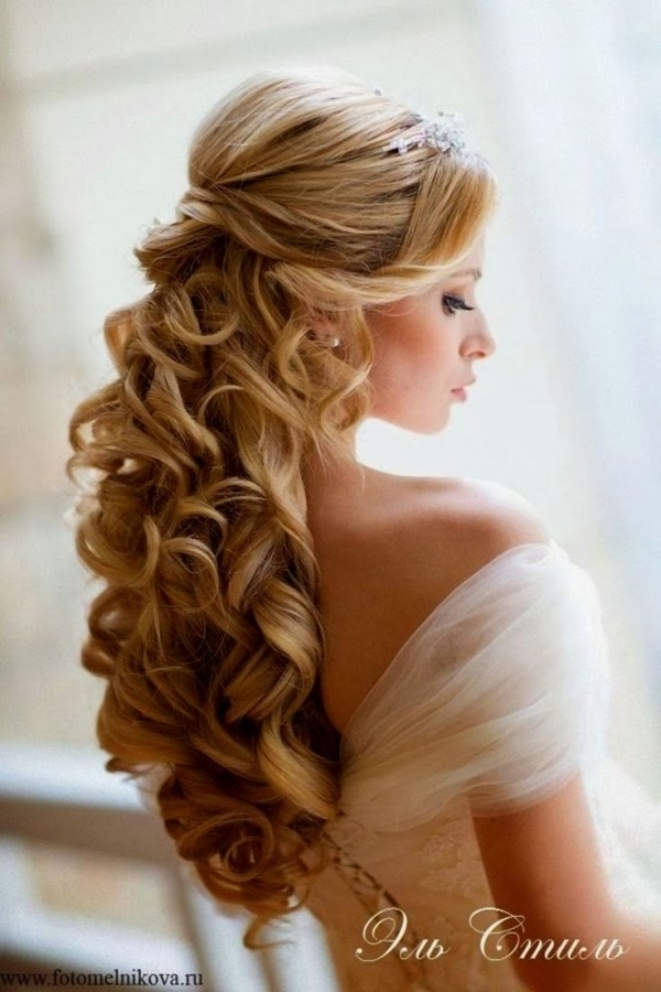 Best 25+ Veil Hair Down Ideas On Pinterest | Fitted Wedding In Intended For Wedding Hairstyles For Long Hair Without Veil (View 3 of 15)