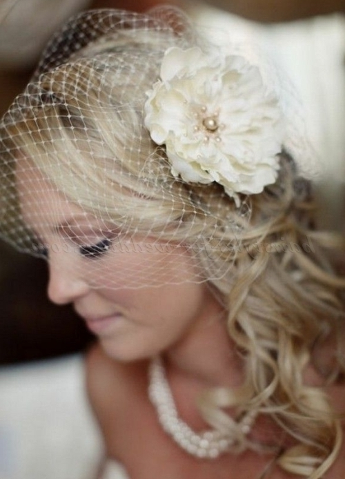 Birdcage Veils – Birdcage Veil | Hairstyles For Weddings Regarding Wedding Hairstyles For Long Hair With Birdcage Veil (View 4 of 15)