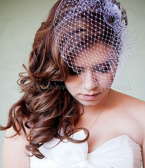 Featured Photo of Wedding Hairstyles For Long Hair With Birdcage Veil