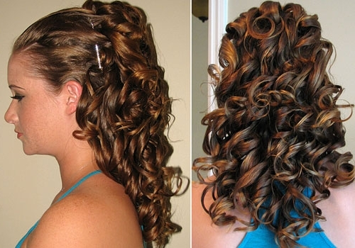 Bridesmaid Hairstyles For Thick Hair | The Holle Throughout Wedding Hairstyles For Long Thick Curly Hair (View 7 of 15)