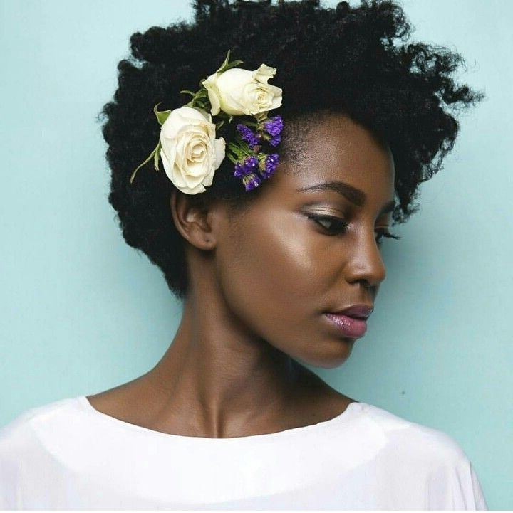Cool Wedding Hairstyles For Natural Black Hair Inspired For Your In Wedding Hairstyles For Natural Black Hair (View 6 of 15)
