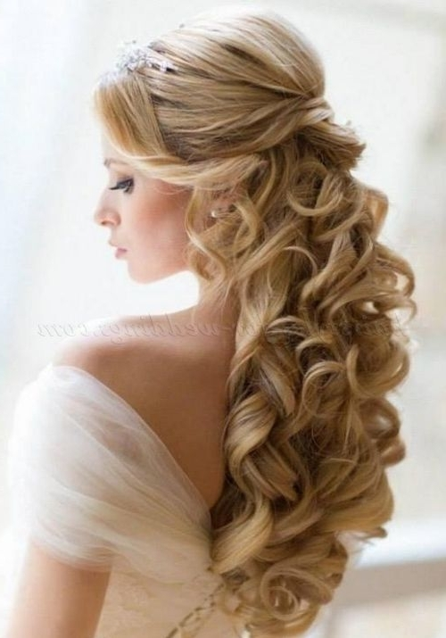 Enchanting Wedding Hairstyles For Long Hair Down For Your Bridal Throughout Wedding Hairstyles With Long Hair Down (View 3 of 15)