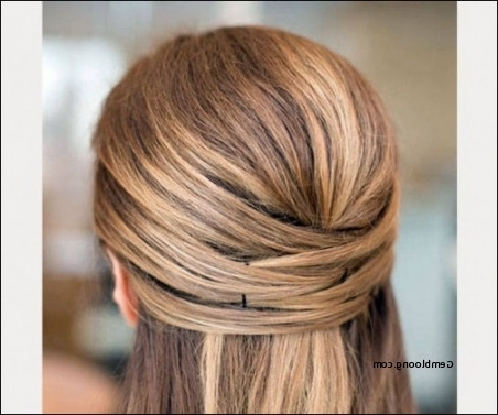 Half Up Half Down Hairstyles Straight Hair Inspirational Wedding Regarding Wedding Hairstyles For Down Straight Hair (View 15 of 15)