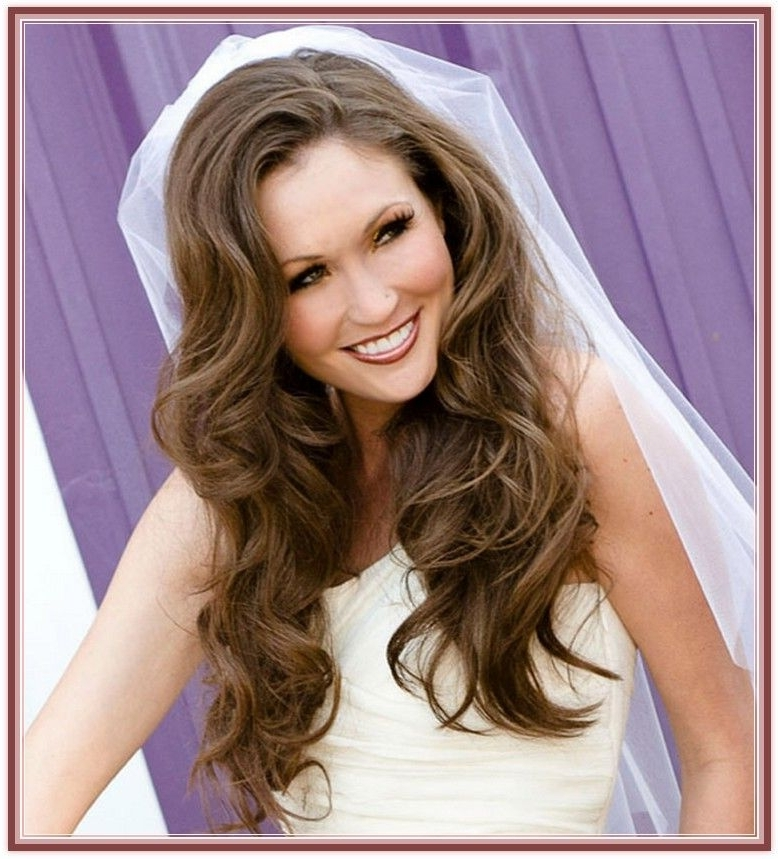 Home Wedding Hairstyle Wedding Down Hairstyles For Long Hair With Within Wedding Hairstyles For Long Hair Down With Veil (View 7 of 15)