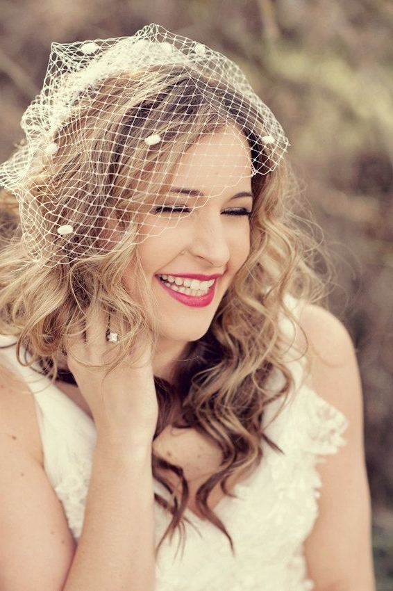 How To Wear A Birdcage Veil | Veil, Wedding Planning And Wedding Intended For Wedding Hairstyles For Long Hair With Birdcage Veil (View 10 of 15)