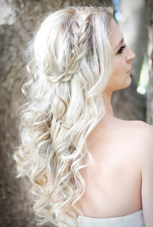 Long Wedding Hairstyles – Wavy Wedding Hairstyle With Braid With Wedding Hairstyles Down With Braids (View 8 of 15)