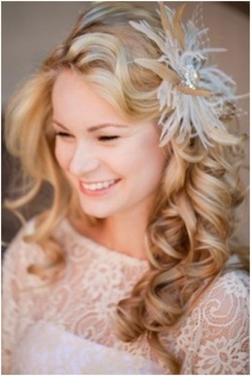 Long Wedding Hairstyles With Veil – Http://hairstyle (View 10 of 15)