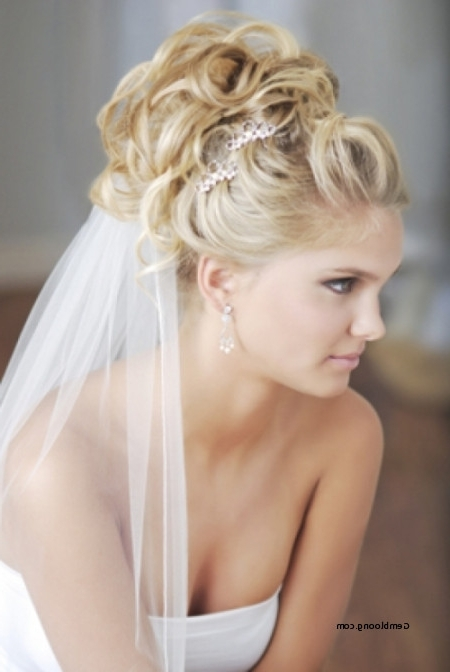 Luxury Wedding Hairstyles For Long Hair Updo With Veil 2018 Regarding Wedding Hairstyles For Long Hair Up With Veil (View 9 of 15)
