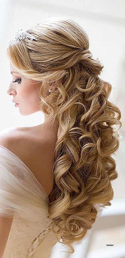 New Wedding Guest Hairstyles Long Hair – Fiveoffivemusic Throughout Wedding Hairstyles For Very Long Hair (View 10 of 15)
