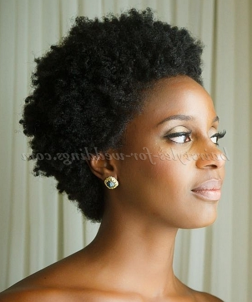 Short Wedding Hairstyles For Natural Curly Hair – Short Bridal Pertaining To Wedding Hairstyles For Natural Afro Hair (View 12 of 15)