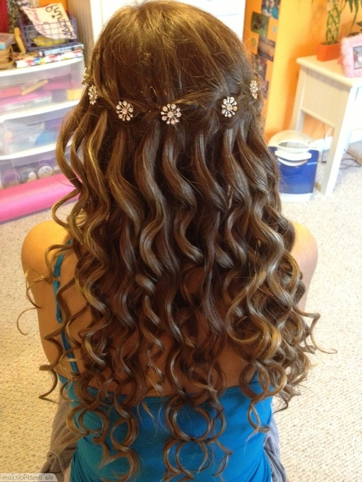 Waterfall Braid Hair Styles Within Plaits And Curls Wedding Hairstyles (View 12 of 15)