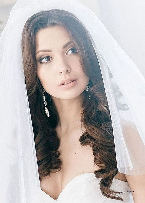 Wedding Hairstyles: Beautiful Long Hair With Veils Wedding With Regard To Wedding Hairstyles For Long Hair Down With Veil (View 15 of 15)