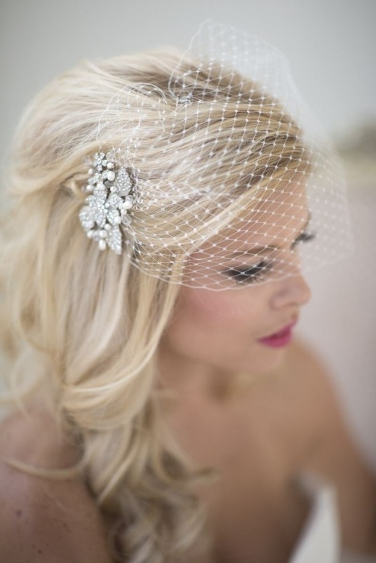 Wedding Hairstyles Birdcage Veil | Full Wedding Magazine Regarding Wedding Hairstyles For Long Hair With Birdcage Veil (View 2 of 15)