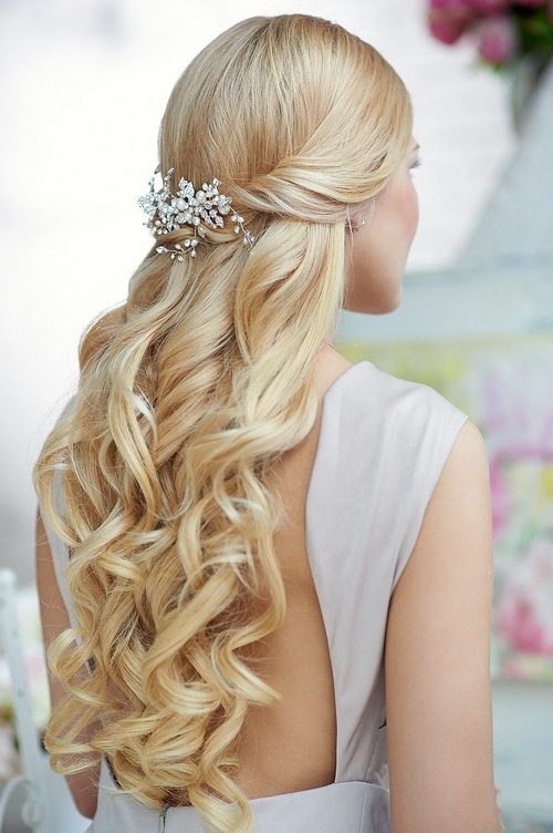 Wedding Hairstyles Curls Down Ideas For Brides | Elstyle Within Wedding Hairstyles For Bridesmaids With Long Hair (View 7 of 15)