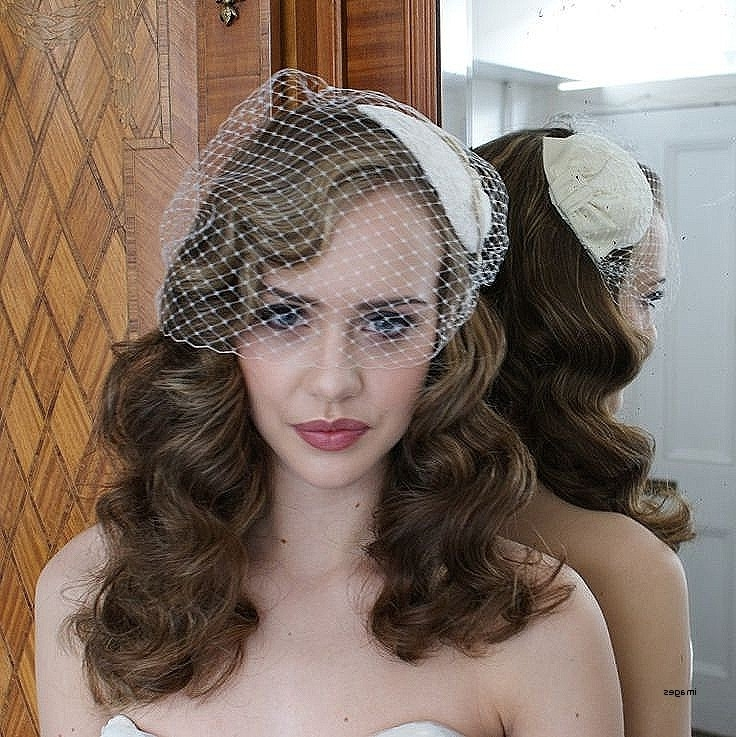 Wedding Hairstyles: Elegant Vintage Wedding Hairstyles With Birdcage Inside Wedding Hairstyles For Long Hair With Birdcage Veil (View 11 of 15)