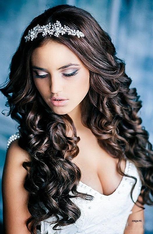 Wedding Hairstyles: Elegant Wedding Hairstyles With A Tiara Wedding In Wedding Hairstyles Down With Tiara (View 5 of 15)