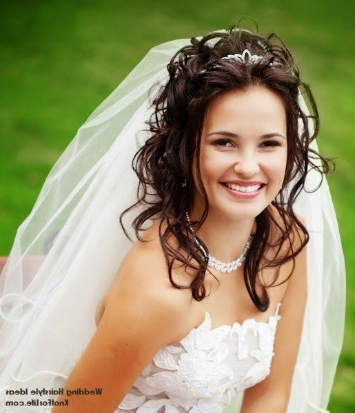 Wedding Hairstyles For Long Hair Down | Debra And Don's Wedding In Wedding Hairstyles For Long Curly Hair With Veil (View 2 of 15)