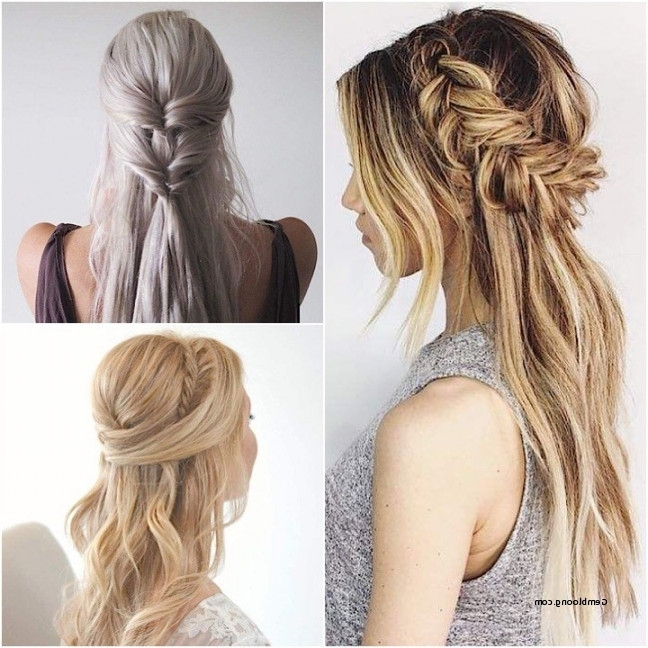 Wedding Hairstyles For Long Hair Half Up Half Down Straight Luxury In Wedding Hairstyles For Down Straight Hair (View 14 of 15)