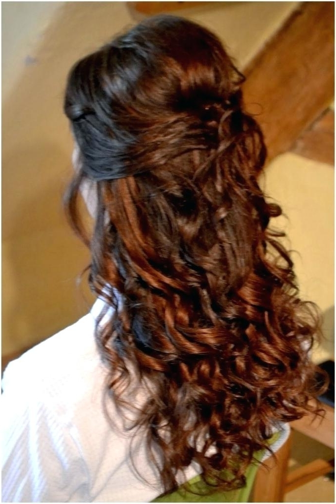 Wedding Hairstyles For Long Hair Half Up Wedding Hairstyle For Long In Half Up Wedding Hairstyles Long Curly Hair (View 2 of 15)