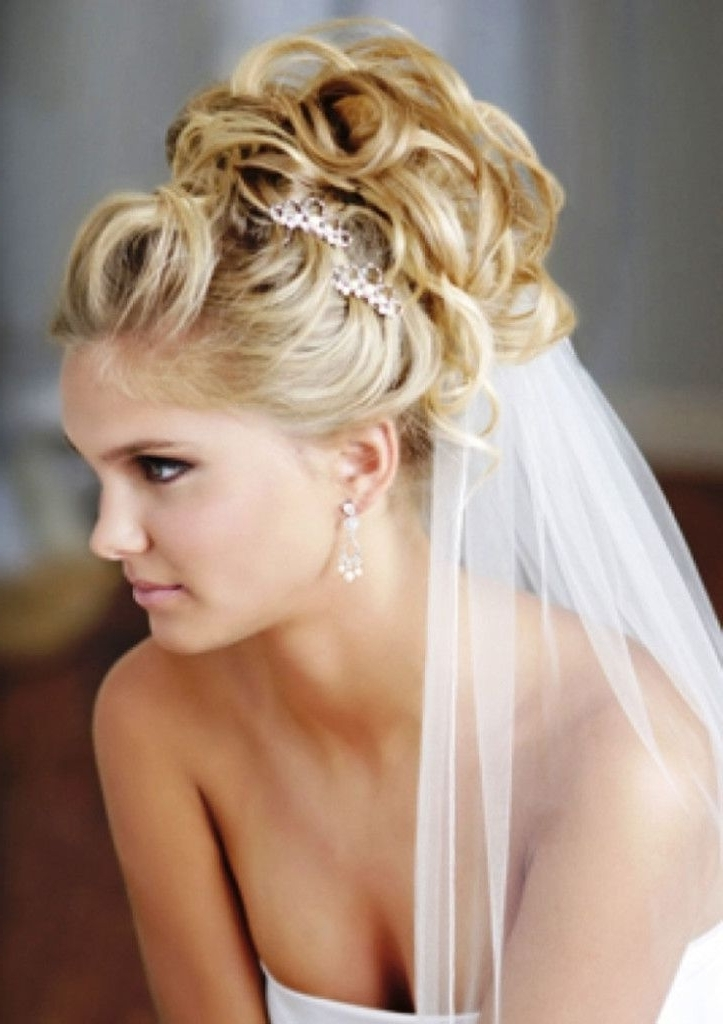 Wedding Hairstyles For Long Hair Updos 1 | Wedding Hairstyles With Pertaining To Updos Wedding Hairstyles With Veil (View 9 of 15)