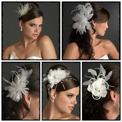 Wedding Hairstyles For Long Hair With Fascinator: Wedding Inside Within Updos Wedding Hairstyles With Fascinators (View 15 of 15)