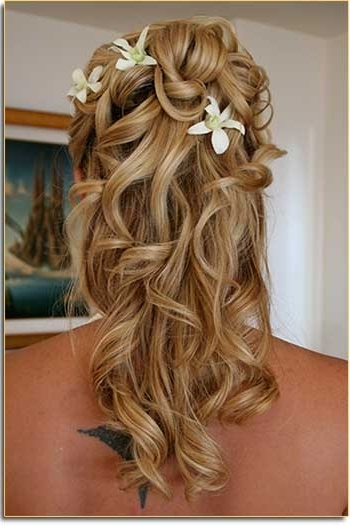 Wedding Hairstyles Half Up Half Down Part 1 | Wedding Hair Styles With Regard To Hair Half Up Half Down Wedding Hairstyles Long Curly (View 14 of 15)