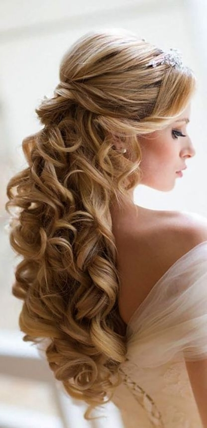 Wedding Hairstyles Long Hair | Crissysmith Pertaining To Wedding Hairstyles With Long Hair (View 12 of 15)