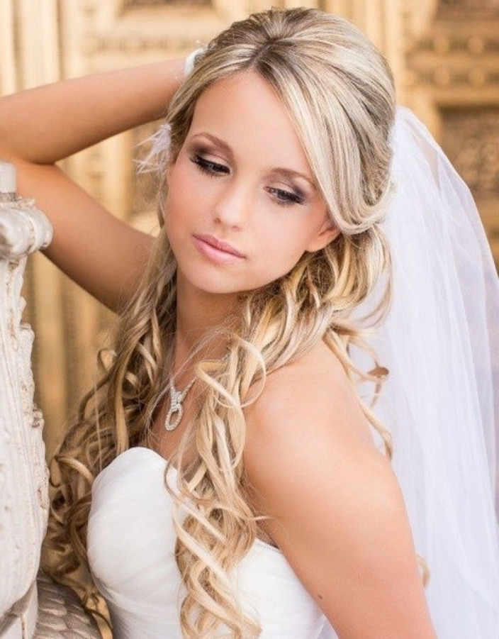 Wedding Hairstyles Long Hair With Veils And Tiaras | Hr (View 12 of 15)