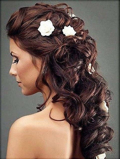 Wedding Hairstyles: Luxury Wedding Hairstyles For Long Curly Hair For Curly Hair Half Up Wedding Hairstyles (View 15 of 15)